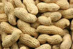 Peanut shells Royalty Free Stock Photography