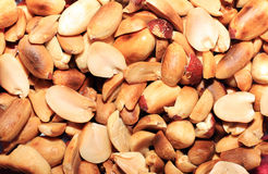 Peanut clear Stock Image