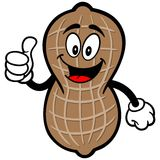 Peanut with Thumbs Up Stock Image