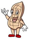 Peanut Stock Image