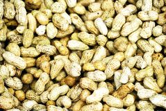 Peanuts. Fresh peanuts for sale in an open air fruit and vegetable market in Asia stock photography