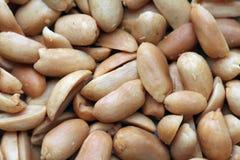 Peanuts. Macro image of unsalted, roasted peanuts Stock Photography