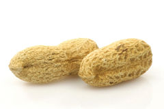 Peanuts. Two whole peanuts isolated on a white background Royalty Free Stock Images