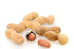 Peanuts. In front of a white background Royalty Free Stock Photos