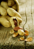 Peanuts. Close-up.Selective focus Stock Photography