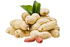 Free Peanuts Stock Images - 16791814
