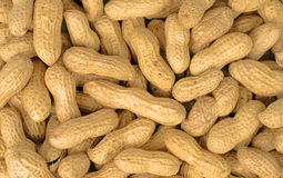 Peanuts. Stack of peanuts-useful background image Royalty Free Stock Image