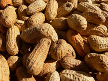 Peanuts. A pile of whole peanuts Royalty Free Stock Photography