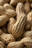 Peanuts. Close-up of some peanuts. background royalty free stock photos