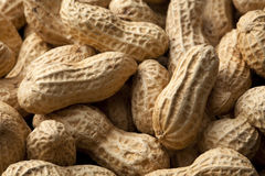 Peanuts. Close-up of some peanuts. background stock photo