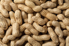 Peanuts. Close-up of some peanuts. background stock images