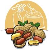 Peanuts Stock Image