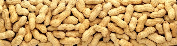 Free Peanuts Royalty Free Stock Images - 2538459