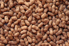 Peanuts. A background of peanuts on the shell Royalty Free Stock Images