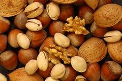 Free Peanuts Royalty Free Stock Photos - 8259238