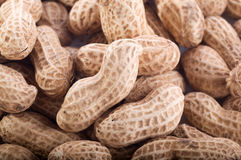 Free Peanuts Royalty Free Stock Photography - 8458027
