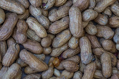 Peanuts. At the annual Brooklet Peanut Festival in downtown Brooklet, Georgia stock photography