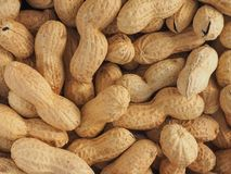 Peanuts food background. Peanuts (Arachis hypogaea) food useful as a background Royalty Free Stock Photography