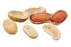 Peanuts Arachis hypogaea on a white background Stock Photography