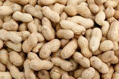 Peanuts Background Stock Image