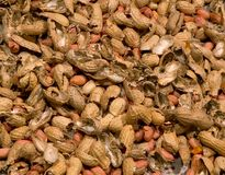 Peanuts Background. Peanuts and smashed peanut shells background Royalty Free Stock Photography