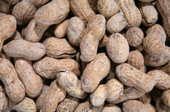 Peanuts Background. A background of peanuts in the shell Royalty Free Stock Photos