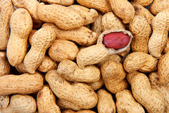 Peanuts background. Close-up of some peanuts background royalty free stock photo