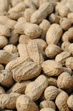 Peanuts background Royalty Free Stock Images