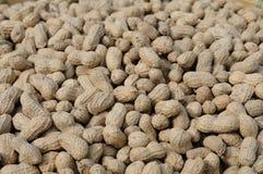 Peanuts background Stock Photos