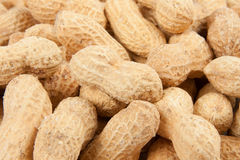 Peanuts background Royalty Free Stock Photo