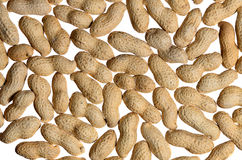 Peanuts background Royalty Free Stock Photography