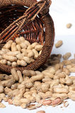 Peanuts  and Basket Stock Photos