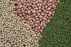 Peanuts and beans Royalty Free Stock Photography