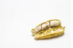 Peanuts boiled and peeled on a white background. Stock Images