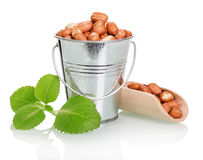 Peanuts in a bucket and wooden scoop Royalty Free Stock Image