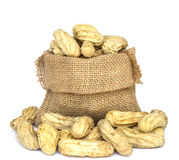 Peanuts in burlap bag on white Stock Photos