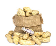 Peanuts in burlap bag on white Stock Photography