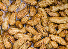 Peanuts cleaning in water Stock Images