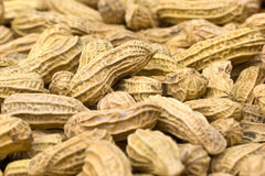Peanuts Stock Photography