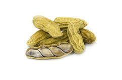 Peanuts in closeup. Fresh peanuts on white background Stock Photography