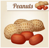 Peanuts. Detailed Vector Icon Royalty Free Stock Photography