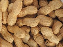 Peanuts food background. Peanuts (Arachis hypogaea) food useful as a background Stock Photography