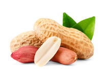 Peanuts with green leaf. Stock Image