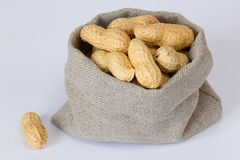 peanuts (groundnuts) Royalty Free Stock Photography