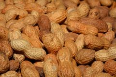 Peanuts, Healthy, Shell, Delicious Royalty Free Stock Photos