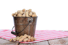 Peanuts ina pail on Table Cloth. Closeup of a pail full of peanuts on a wood picnic table and a red checked tablecloth. Horizontal format with a white background royalty free stock images