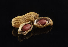 Peanuts isolated. On black background royalty free stock photography
