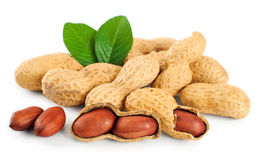 Peanuts. Isolated on a white background Stock Image