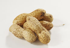 Peanuts isolated. On white background royalty free stock image