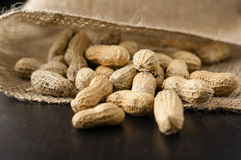 Peanuts in a jute sack. Peanuts scattered from a jute sack close up royalty free stock photo